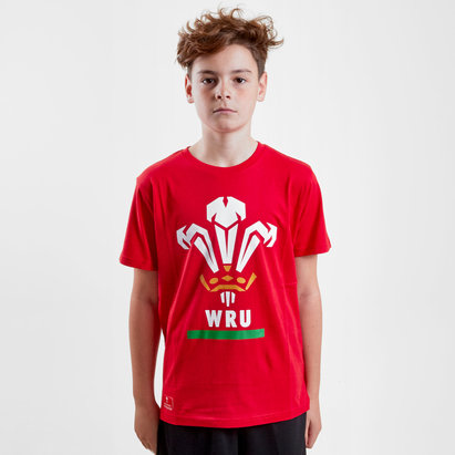 Brandco Pays de Galles WRU 2018 - Tshirt de Rugby Logo Loisirs Enfants
