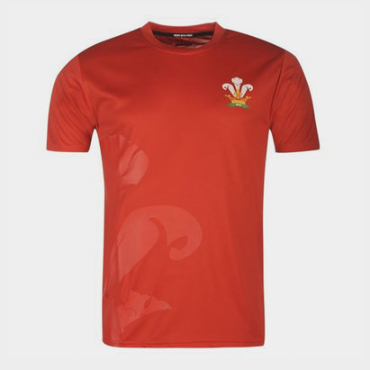 Wales Rugby Pays de Galles - Tshirt de Rugby Poly