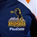 Polo de rugby Brindie Brumbies 2019